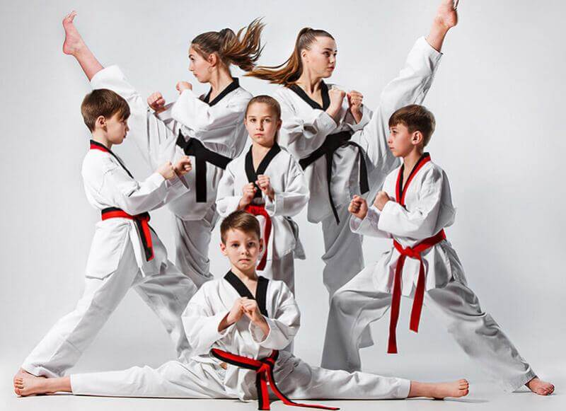 Homeschool martial arts